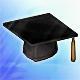 Graduate Hat (+2% Crit)(30 days)