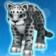 Sonia the Snow Leopard (Speed 200)(Permanent)